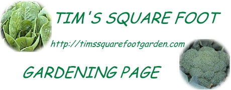 tims square foot gardening page